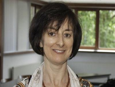 Investigadora do INESC TEC eleita Presidente do IASC